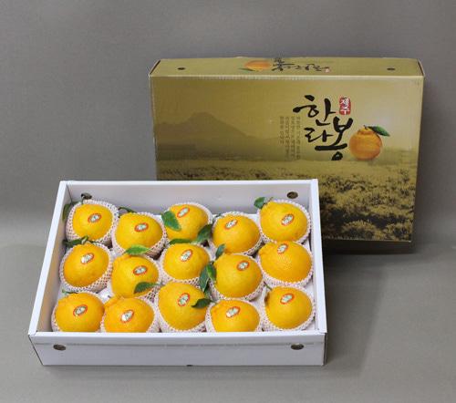 [선물세트] 명품한라봉선물세트5kg(15~20개입)이식사